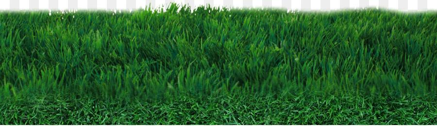 rumput lapangan sepak bola rumput sintetis gambar png rumput lapangan sepak bola rumput