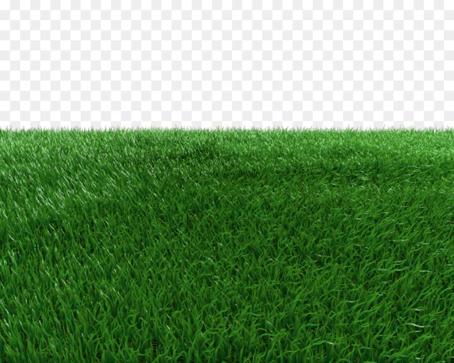 Rumput Sintetis, Hijau, Padang Rumput Gambar Png