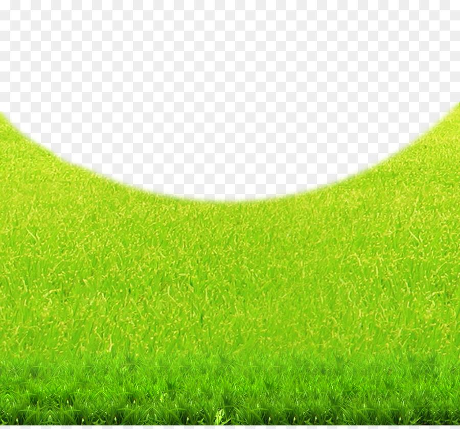 rumput hijau padang rumput gambar png rumput hijau padang rumput gambar png