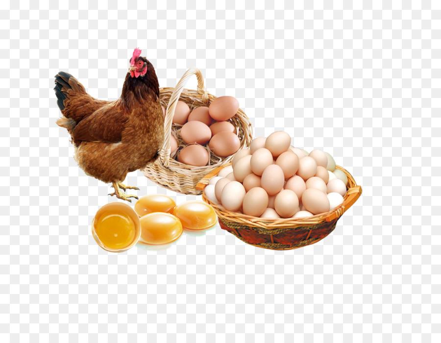 Contoh Banner Telur Ayam - gambar spanduk