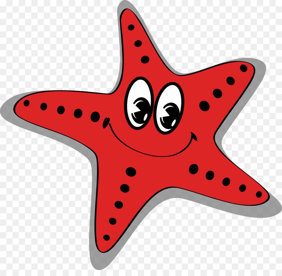 Bintang Laut Kartun Laut Gambar Png