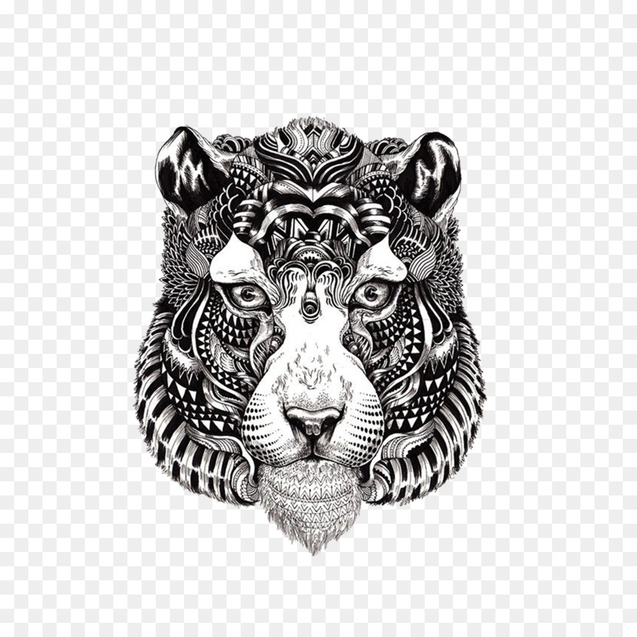 Harimau Benggala Buku Mewarnai Gambar Gambar Png