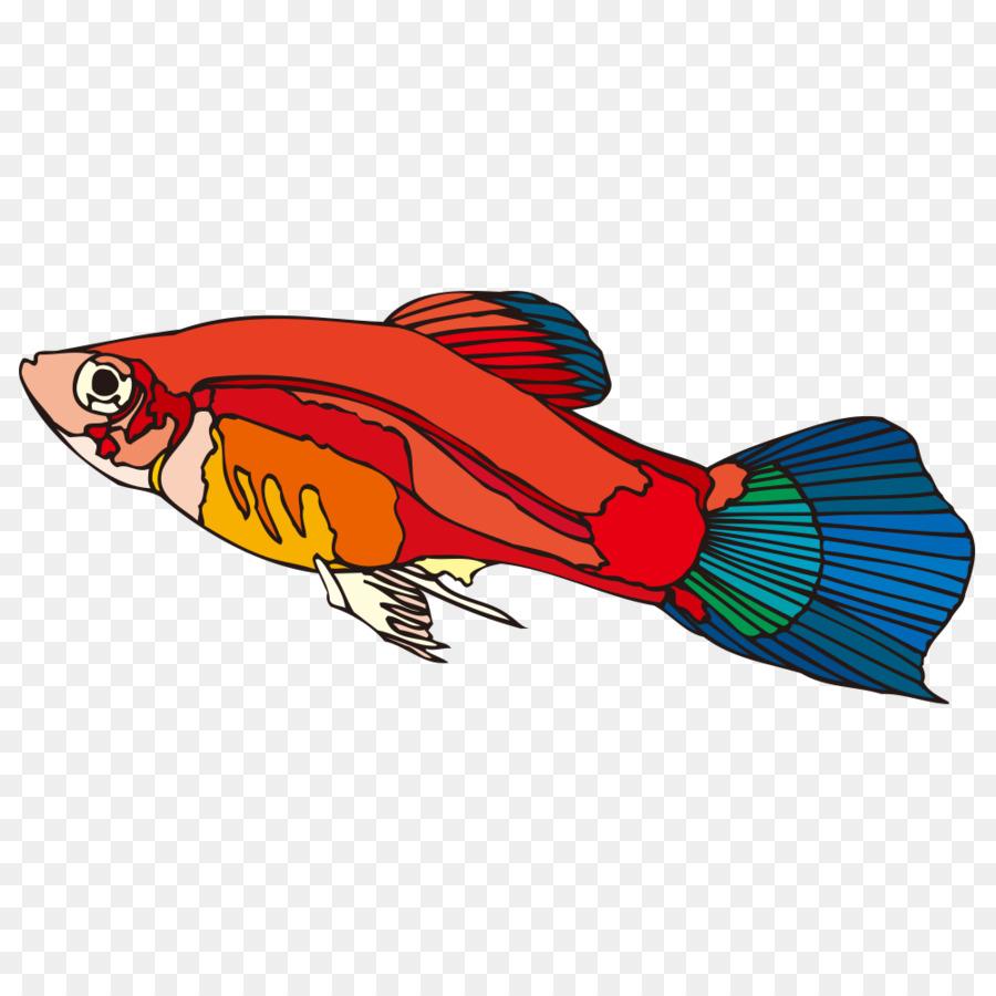 Download 840 Gambar Kartun Ikan Guppy HD Terbaik Gambar Ikan