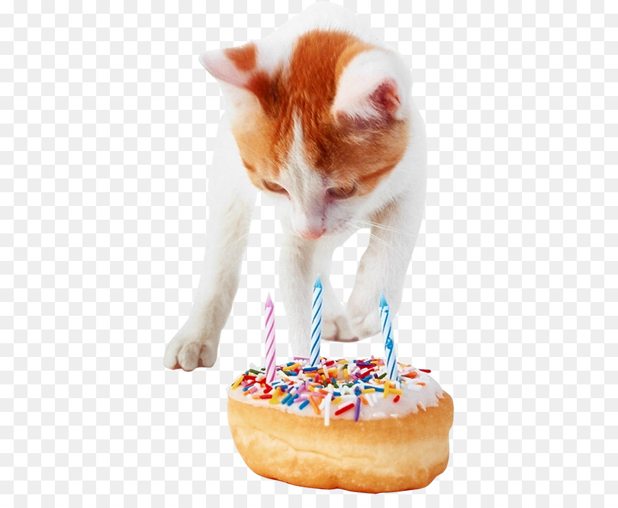 Kue Ulang Tahun Kucing Kumis Gambar Png