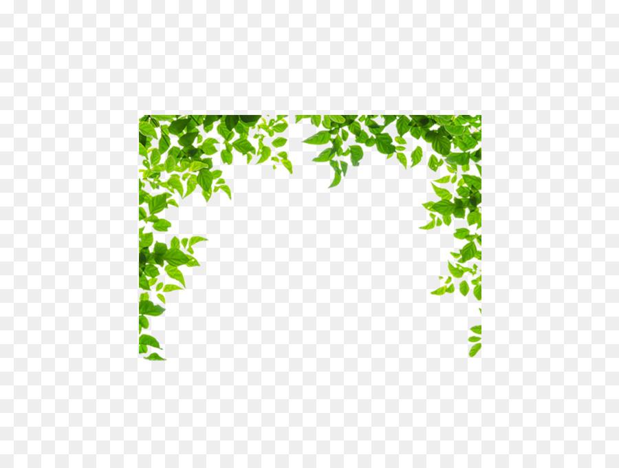 perbatasan dan frame daun hijau gambar png perbatasan dan frame daun hijau
