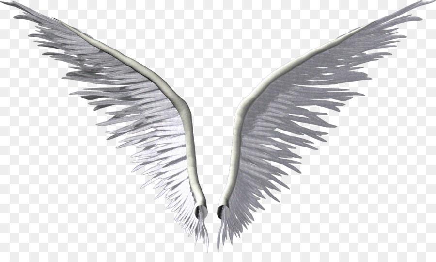 Sayap, Malaikat, Fotografi gambar png