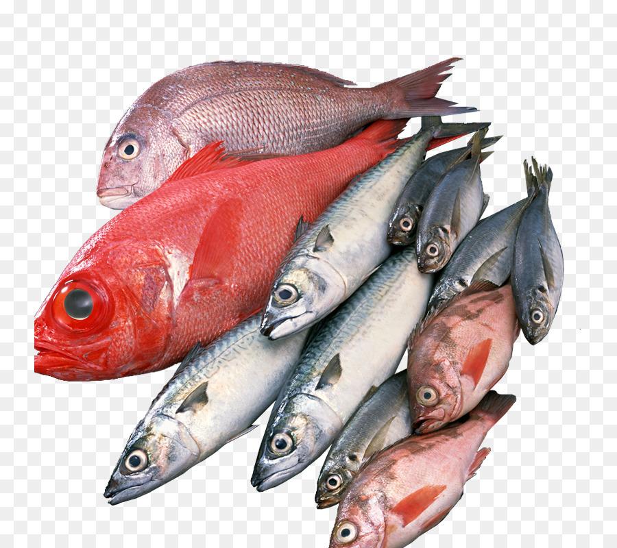 Masakan Jepang Makanan Laut Ikan Gambar Png