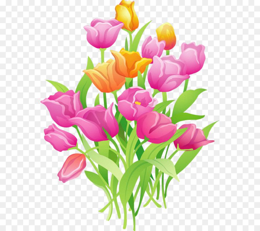 Bunga Tulip Euclidean Vektor Gambar Png