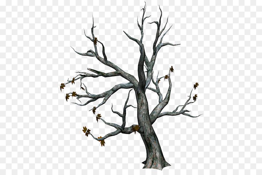 Pohon Cabang Musim Gugur Gambar Png