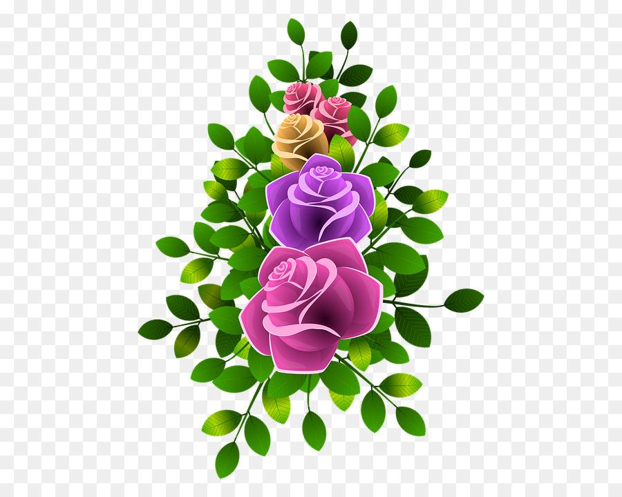 Taman Mawar Mawar Centifolia Bunga Gambar Png