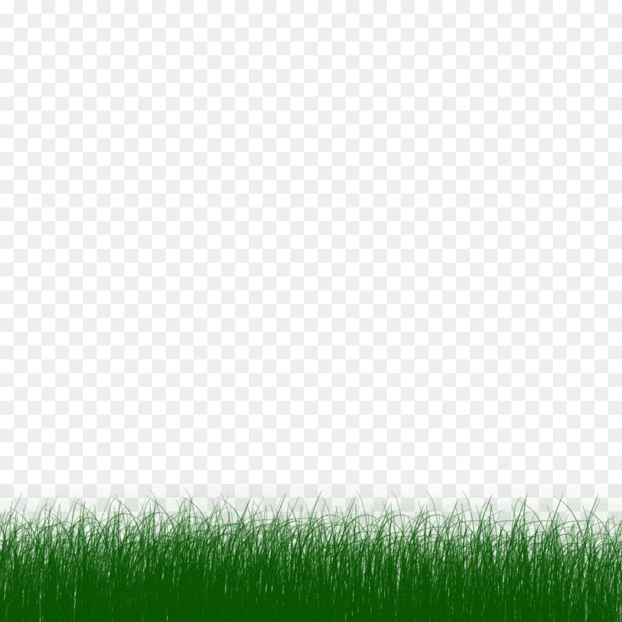 Animasi, Rumput, Scalable Vector Graphics Gambar Png
