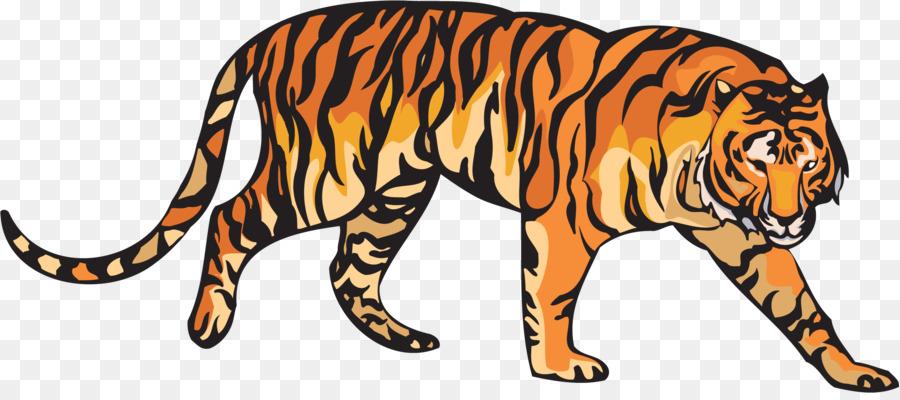 Paling Keren 18+ Gambar Kartun Harimau Sumatera - Gani Gambar