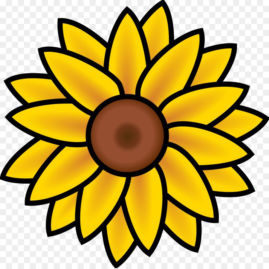 Umum Bunga Matahari Buku Mewarnai Biji Bunga Matahari