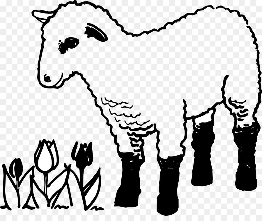 Domba Perumpamaan Tentang Domba Yang Hilang Buku Mewarnai Gambar Png