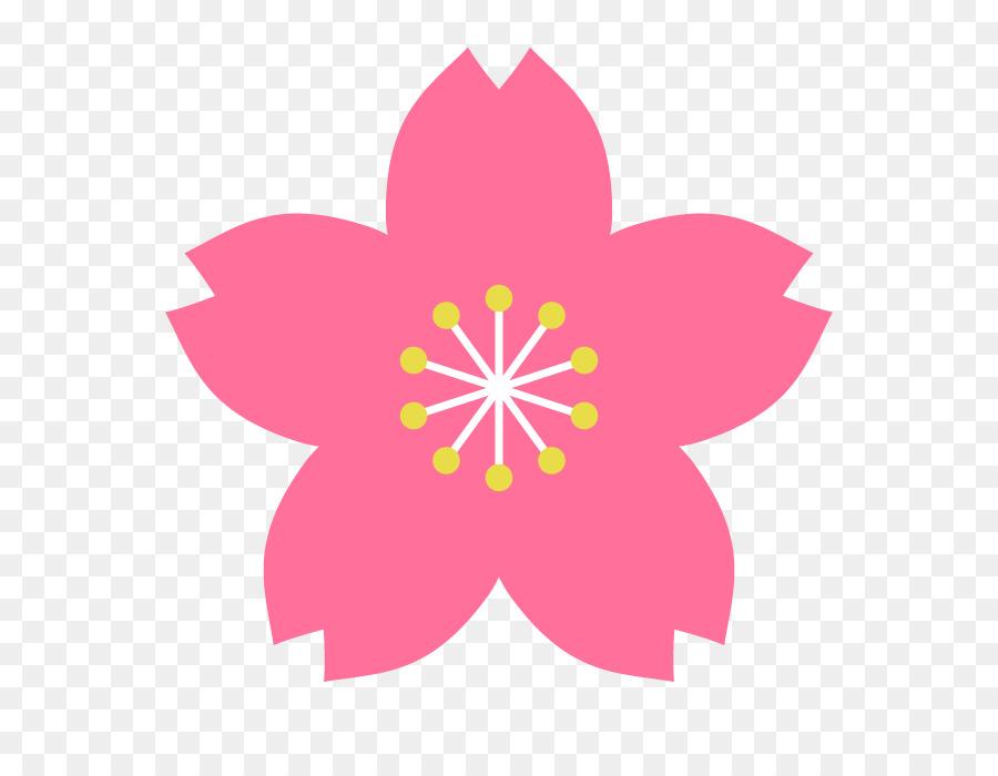 Download 52 Gambar Bunga Sakura Di Kertas Paling Cantik