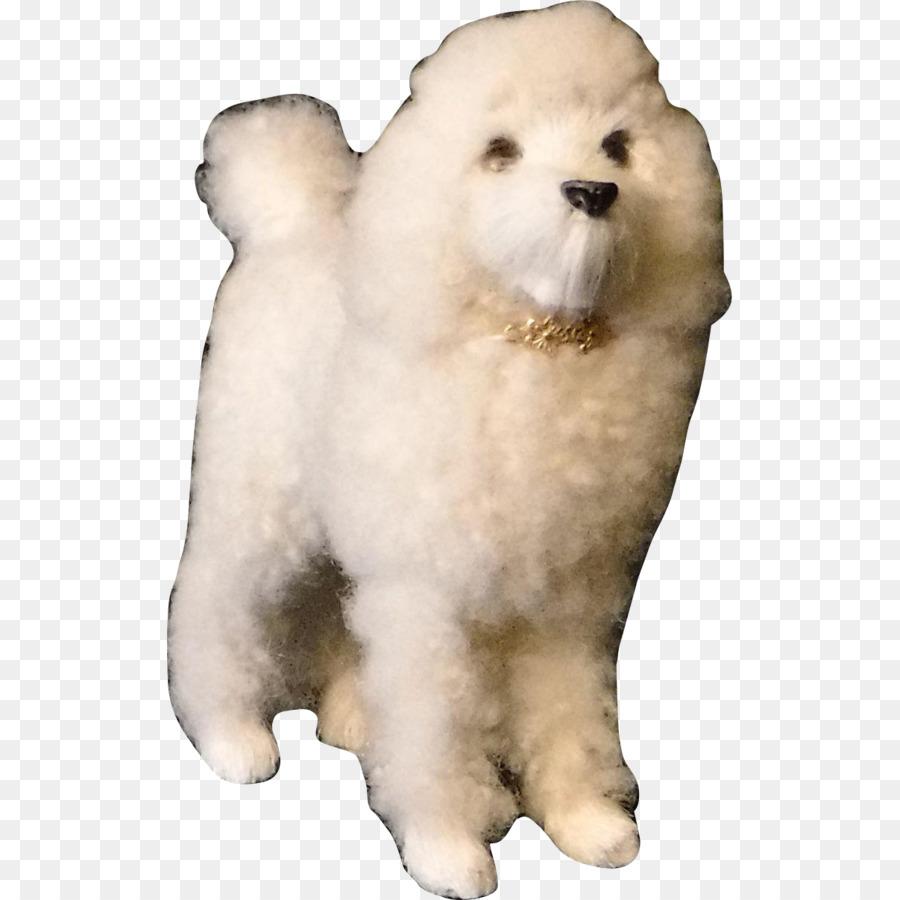 Anjing Samoyed Pomeranian Besar Pyrenees Gambar Png