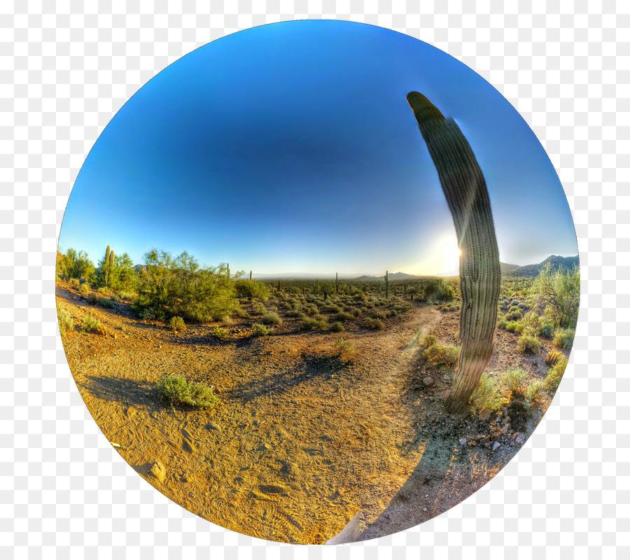 87+ Gambar Pemandangan Ekosistem HD