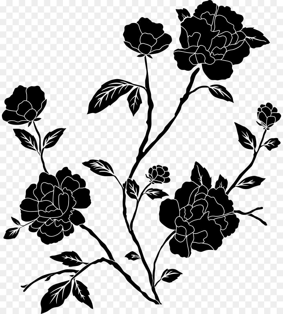 Menakjubkan 26 Foto Wallpaper Bunga Hitam Gambar Bunga Indah