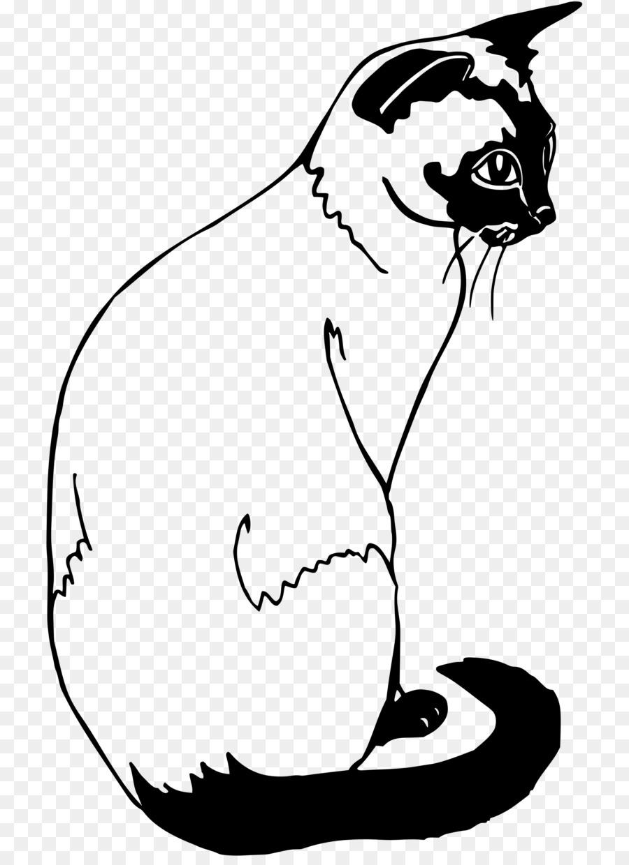kucing siam kucing thai kucing gambar png kucing siam kucing thai kucing gambar png