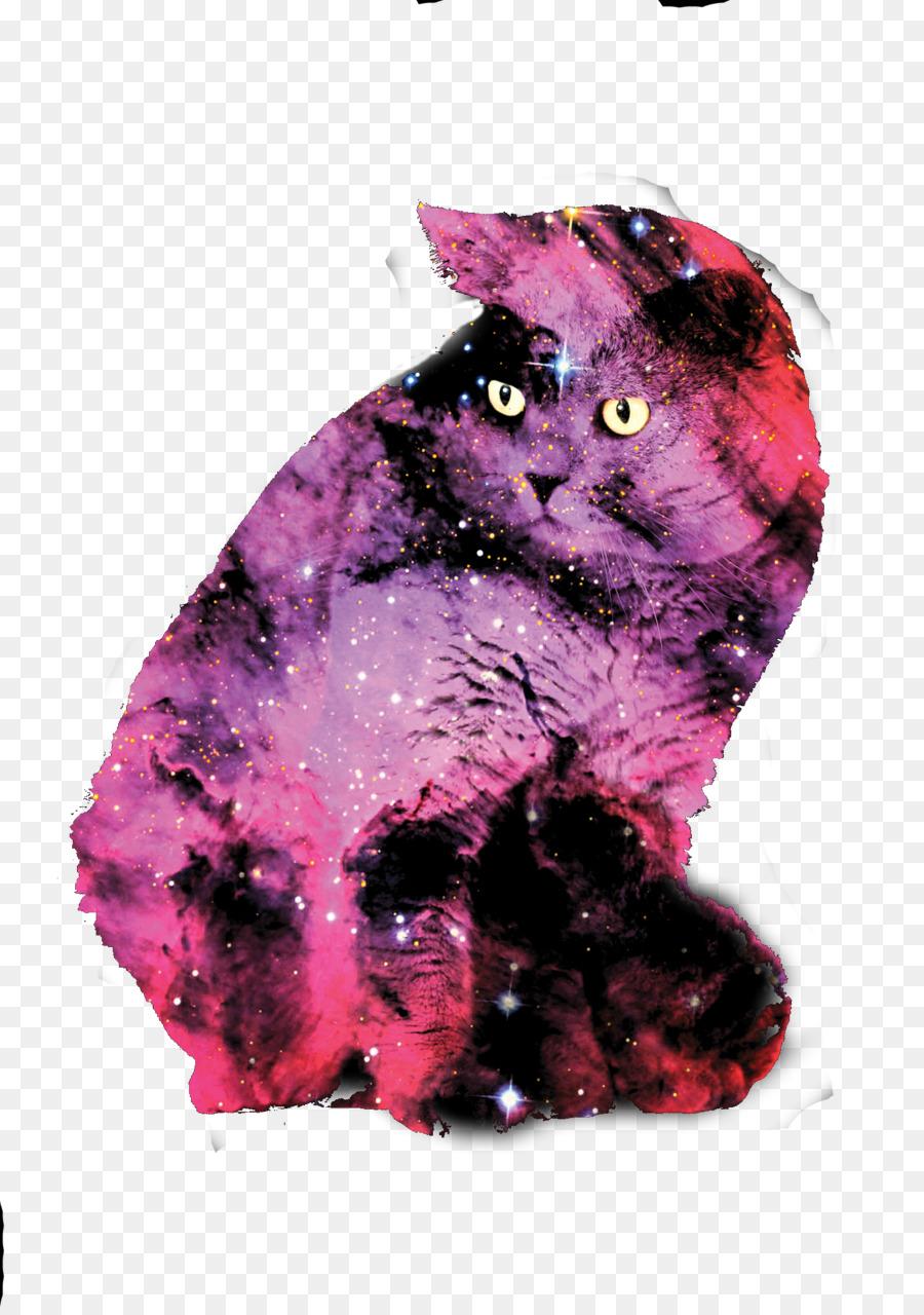 Unduh 101+  Gambar Kucing Galaxy Terlihat Keren