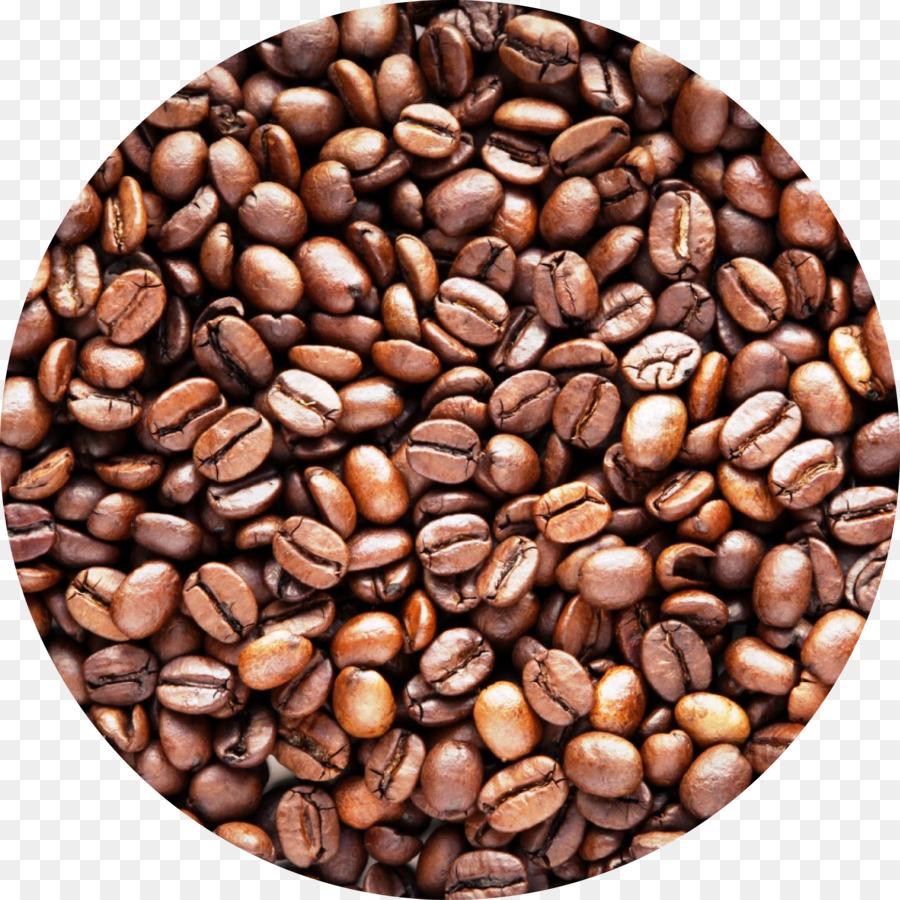 kopi kafe biji kopi gambar png kopi kafe biji kopi gambar png