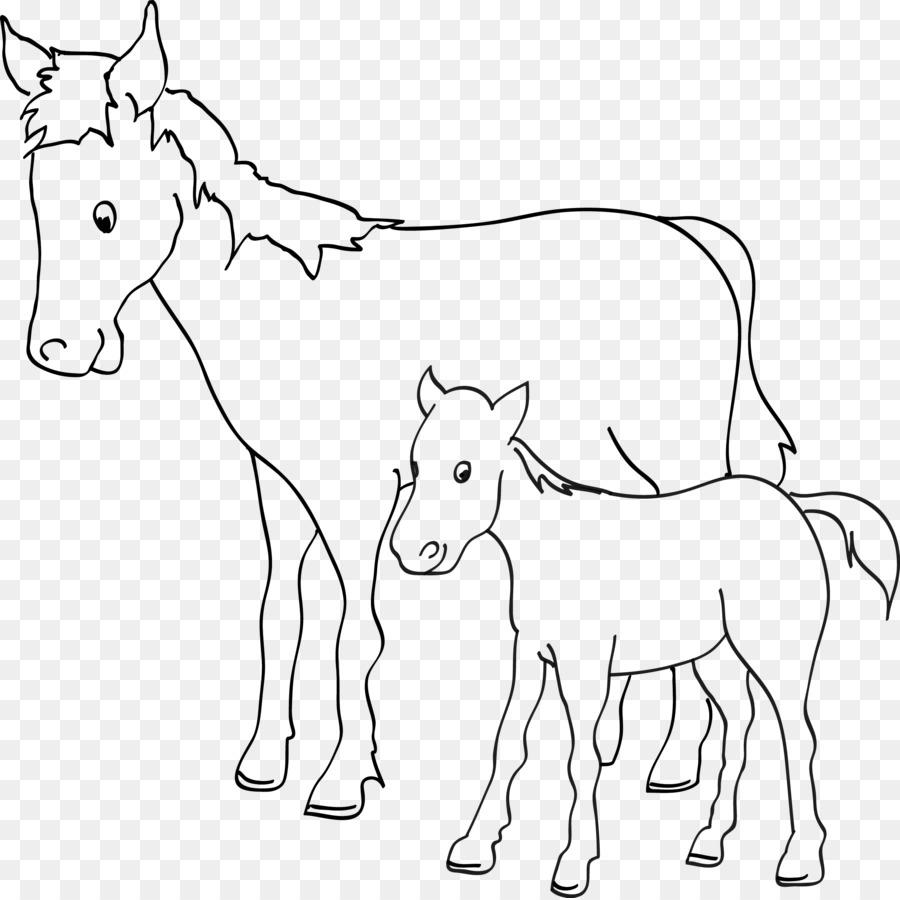 Keledai Kuda Buku Mewarnai Gambar Png