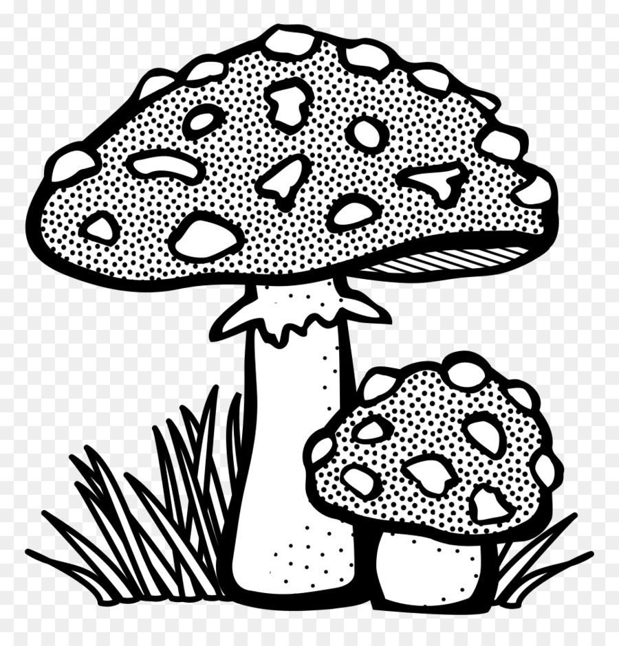 Jamur Hitam Dan Putih Gambar Gambar Png