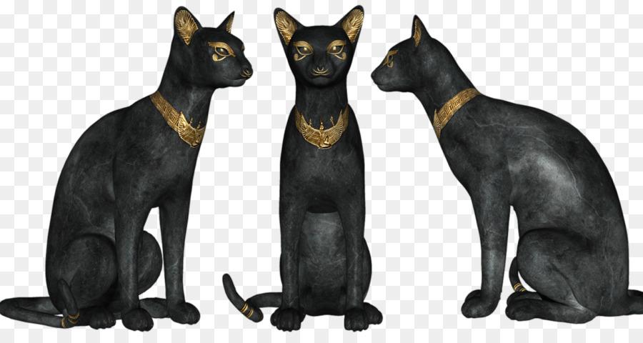 Kucing Hitam Kucing Bombay Mesir Kuno Gambar Png