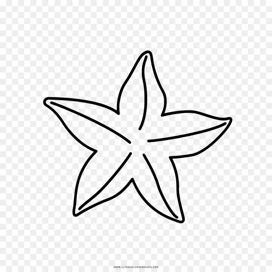 Buku Mewarnai Gambar Bintang Laut Gambar Png