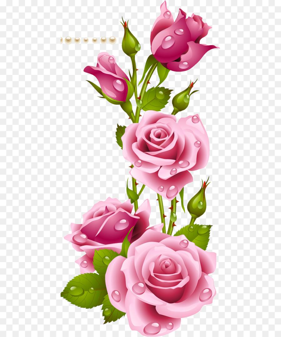 kisspng desktop wallpaper flower garden roses wallpaper rosa parks 5b111c3adc4ad0.6242844515278479949023