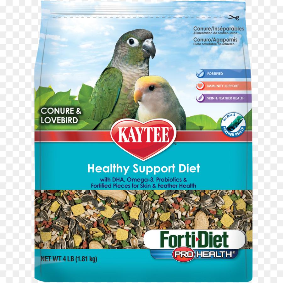 Burung Beo Lovebird Makanan Burung Gambar Png