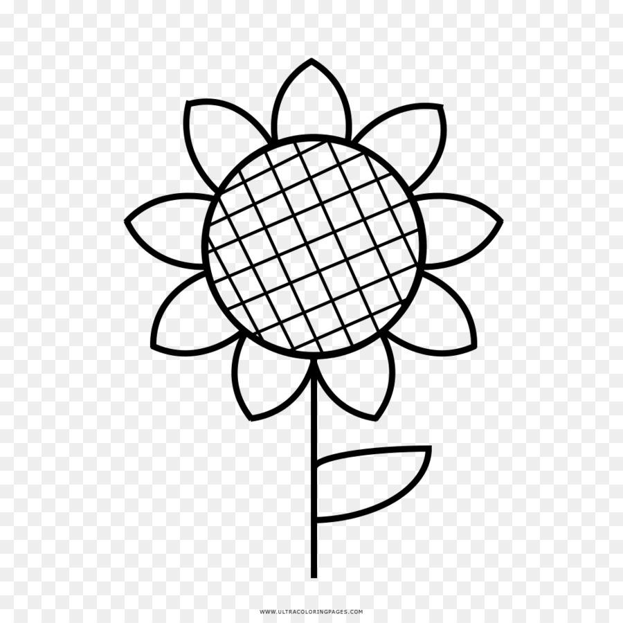 Buku Mewarnai Umum Bunga Matahari Gambar Gambar Png