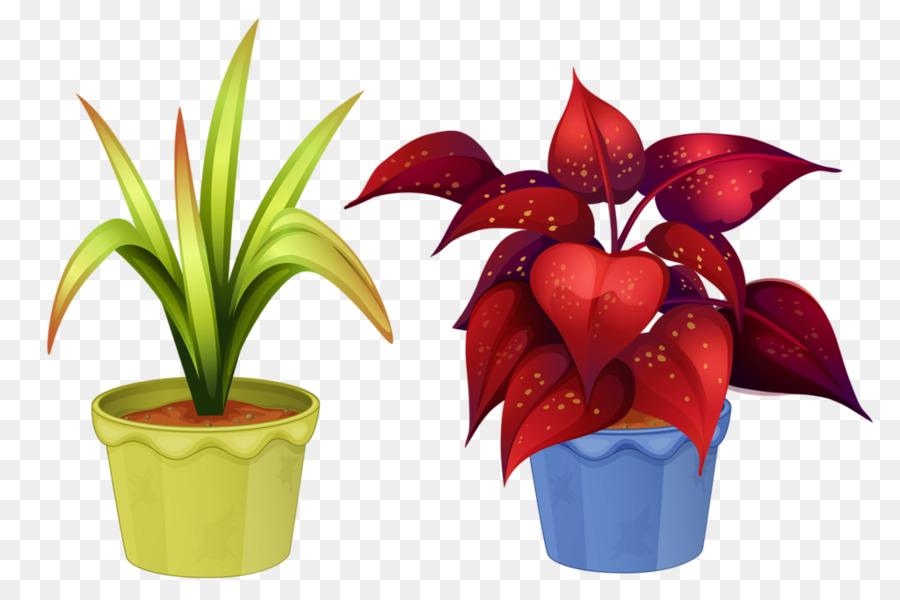 Tanaman Hias Pot Bunga Houseplant Gambar Png