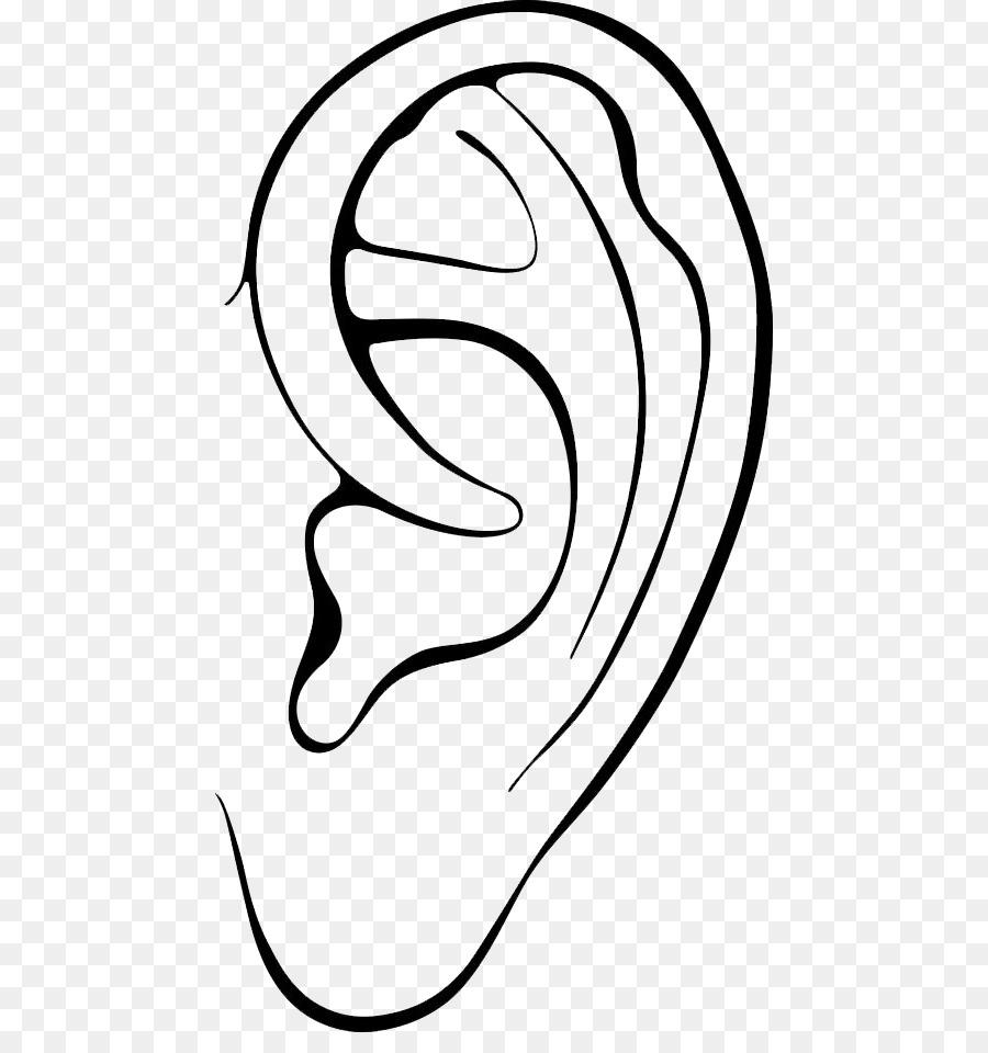Telinga Telinga Runcing Gambar Gambar Png