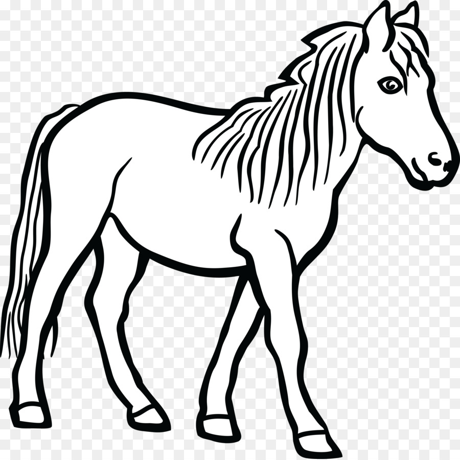 Mewarnai Gambar Garis Seni Kuda Gambar Png