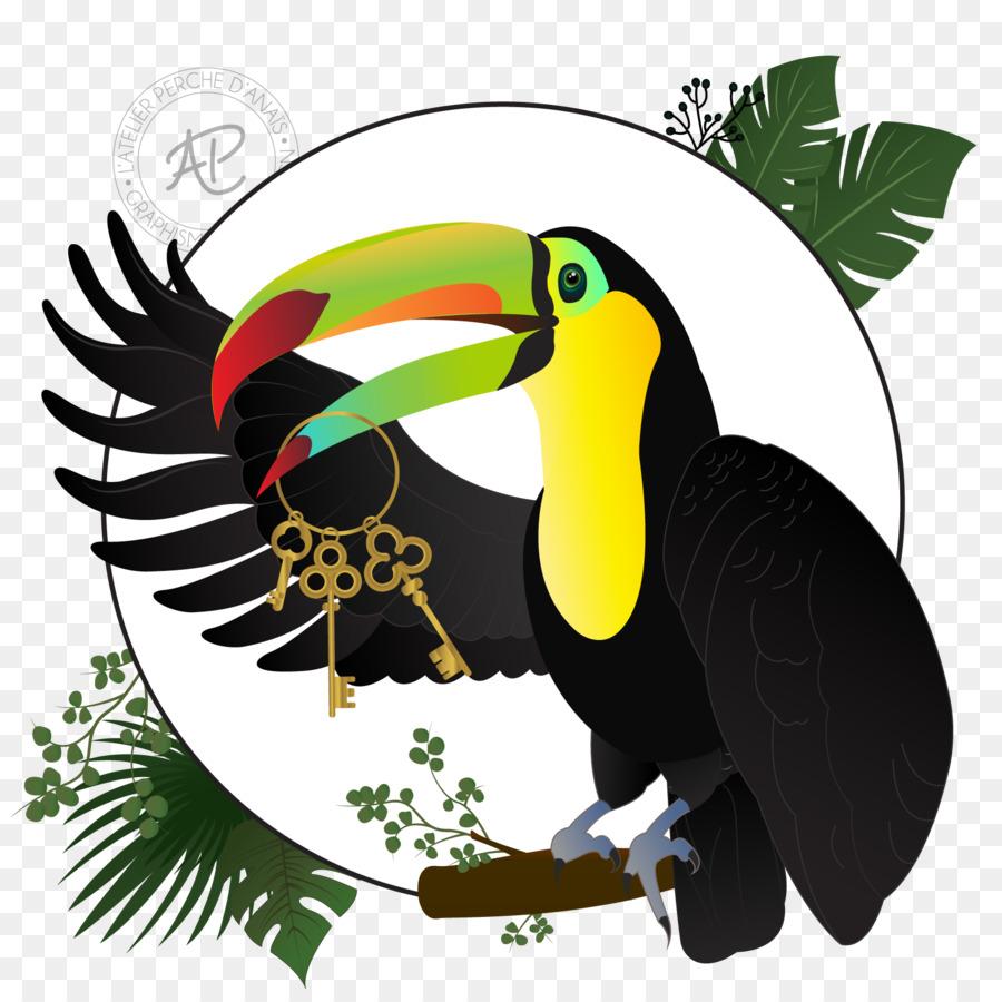 Desain Grafis Desain Web Burung Enggang Gambar Png