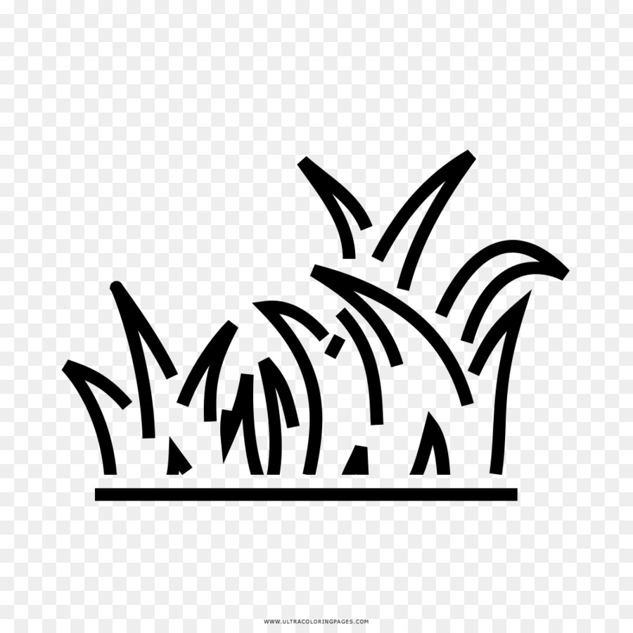 Rumput Gambar Rumput Sintetis Gambar Png
