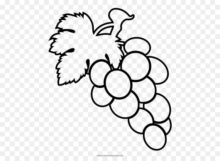 Anggur Buku Mewarnai Gambar Gambar Png