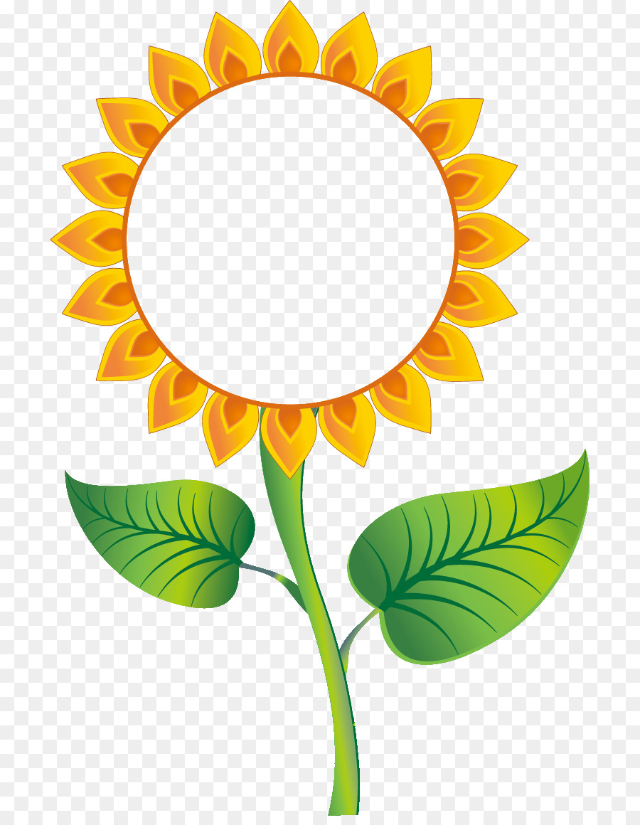Umum Bunga Matahari Bunga Matahari Poster Gambar Png
