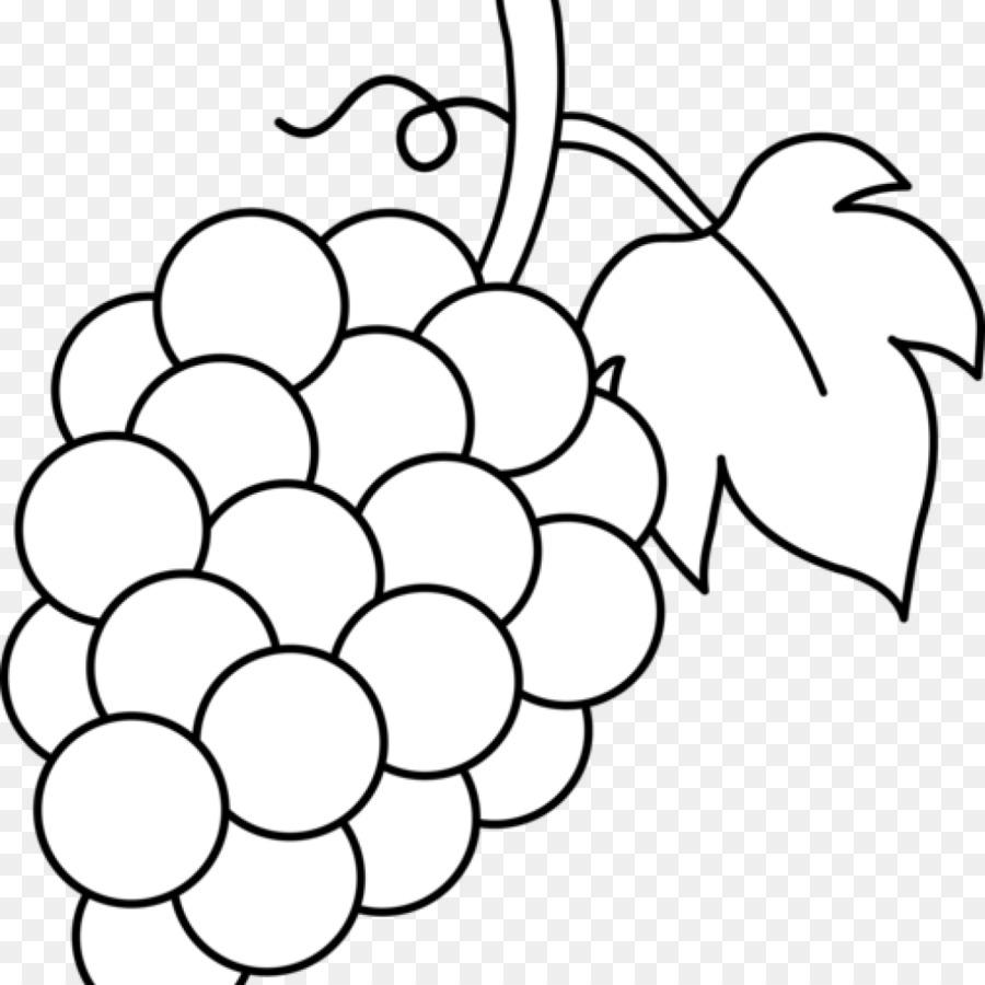 Mewarnai Buah Anggur Paimin Gambar