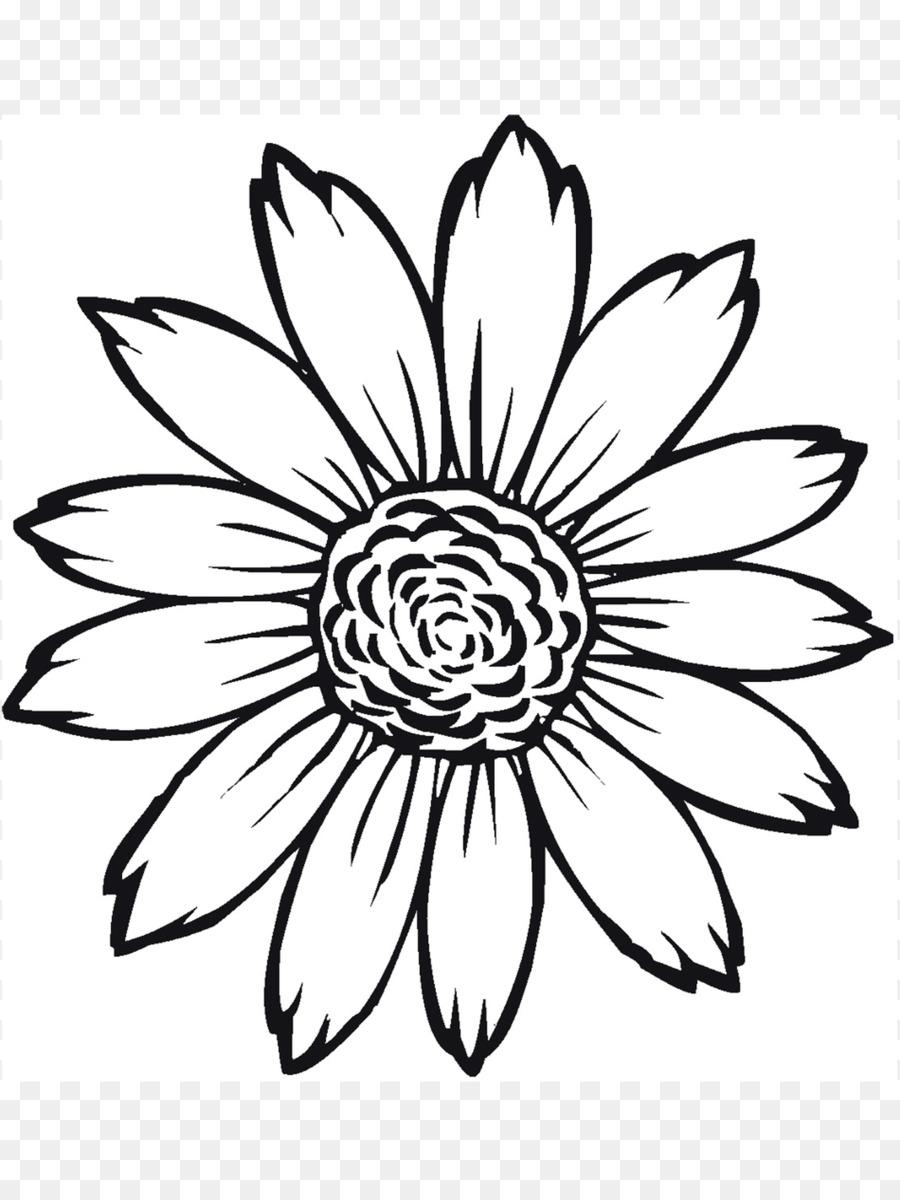 Buku Mewarnai Umum Bunga Matahari Warna Gambar Png
