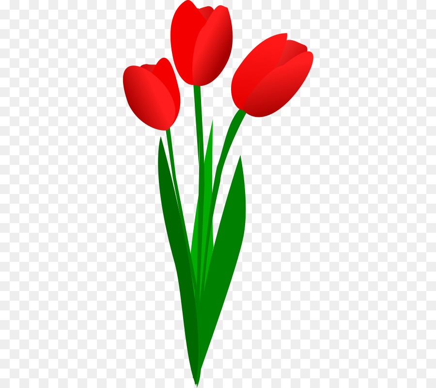 Tulip Bunga Karangan Bunga Gambar Png