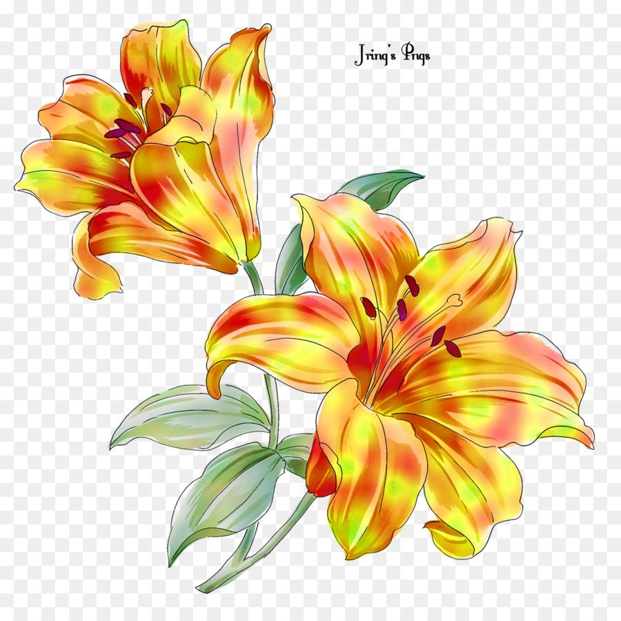 89 Gambar Bunga Lili Kartun HD Gambar Pixabay