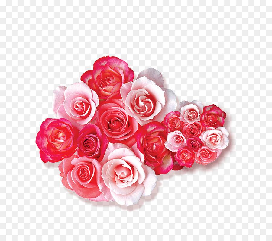76+ Gambar Bunga Mawar Merah Kartun Paling Bagus