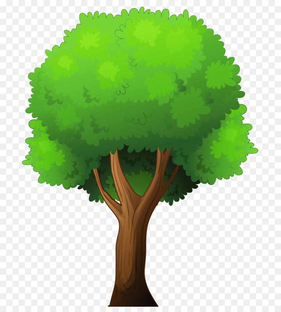 Pohon Fotografi Saham Royaltyfree gambar png