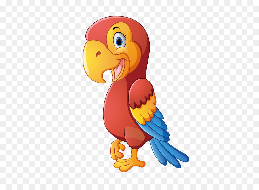 300 Gambar Burung Beo Kartun Paling Baru Gambar Id