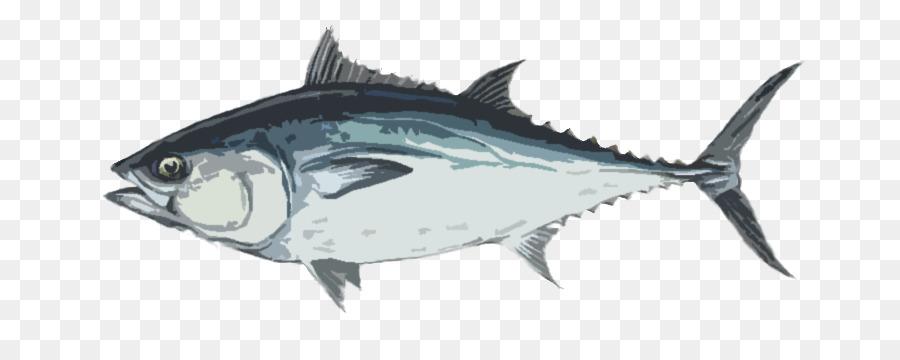 longtail tuna cakalang ikan gambar png longtail tuna cakalang ikan gambar png